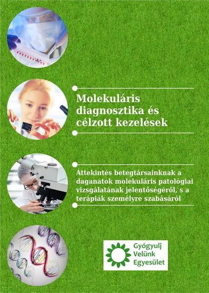 GYVE_molekulás_cimoldal_k